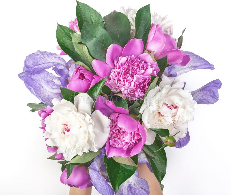 Bouquet of pink and white peonies and irises in woman`s hand isolated on white background. Flat lay. Bouquet of pink and white peonies and irises in woman`s royalty free stock photos