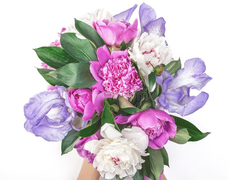 Bouquet of pink and white peonies and irises in woman`s hand isolated on white background. Flat lay. Bouquet of pink and white peonies and irises in woman`s stock images