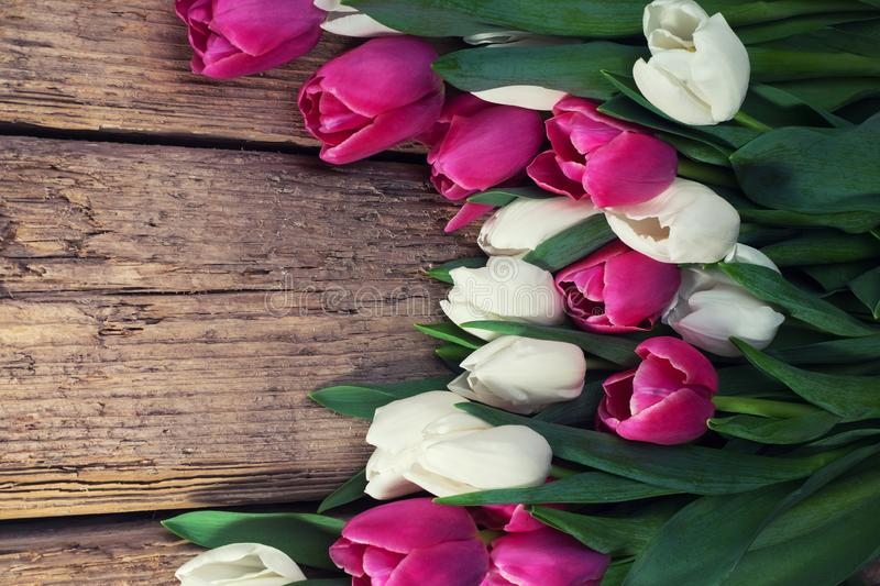 A bouquet of pink and white tulips on a wooden table. Spring flowers. Creation of cards for Valentine`s Day, Mother`s Day and. Women`s Day holiday.Space for stock images