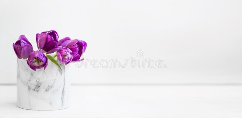 Bouquet pourpre de tulipes de ressort dans un vase sur le fond blanc, bouquet de fleurs de ressort images libres de droits