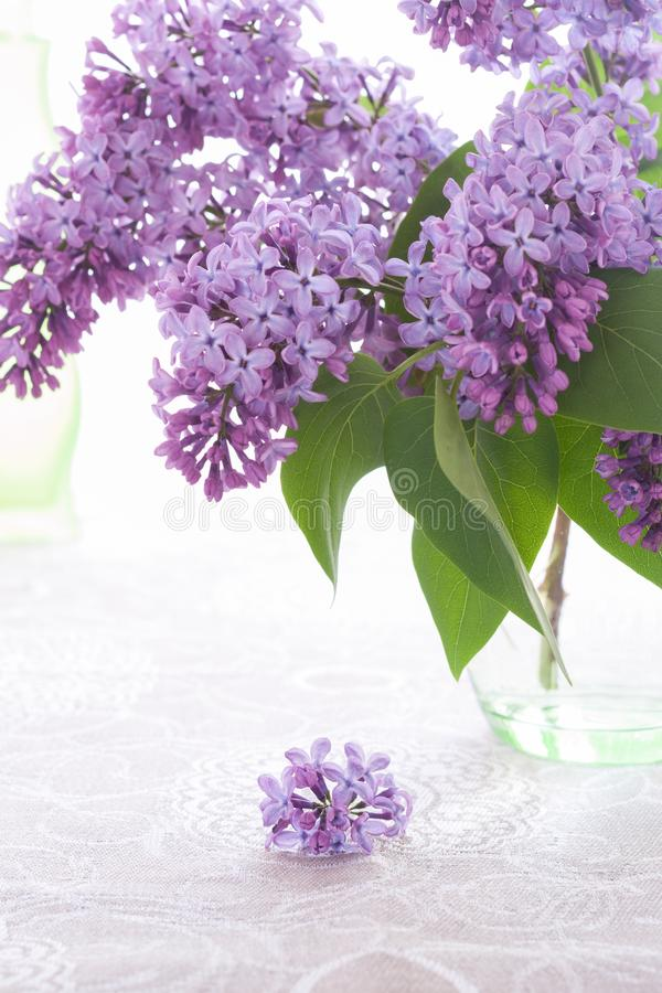 Bouquet or purple lilac is standing in green glass vase and small inflorescence is lying on flax tablecloth. royalty free stock photography
