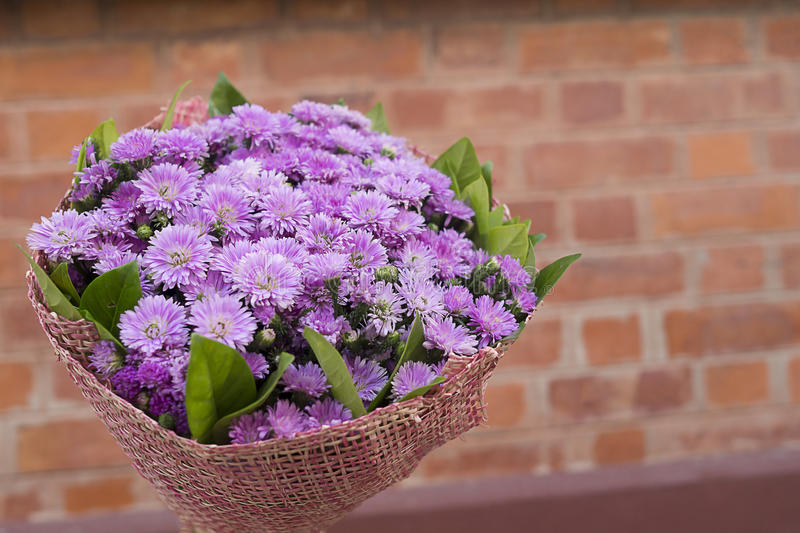 Bouquet of purple flowers in vintage brown brick as background with copy space stock photo