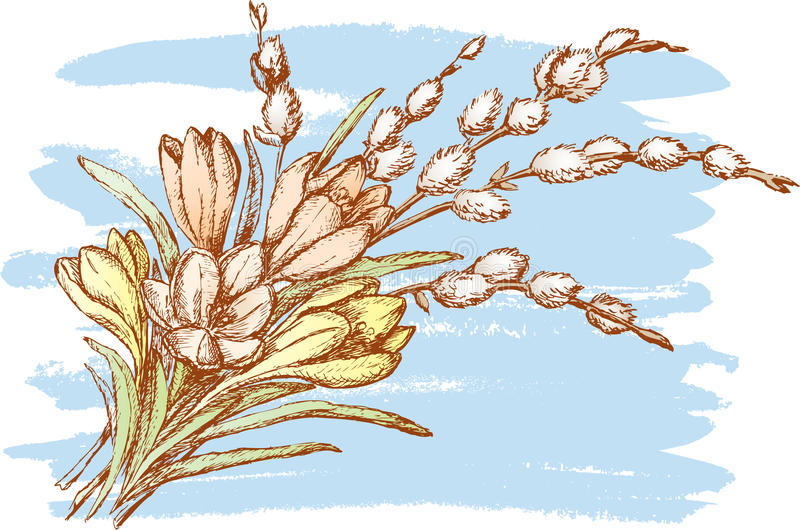 Bouquet with the willow royalty free illustration