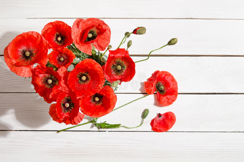 Brand-new Bouquet Of Red Poppies In Glass Vase And Poppy Petals Near Stock  RX18