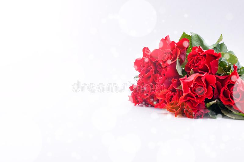 Bouquet of red rose on a white background. Free space for tksta. Gift or greeting card for the holiday. Concept for Valentine`s royalty free stock photo