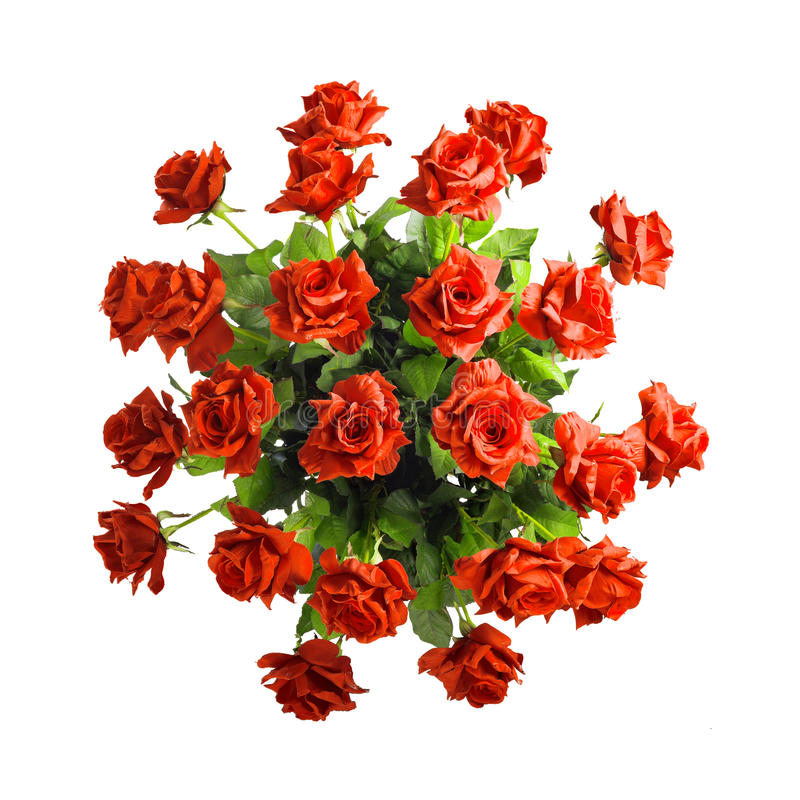 Download Bouquet Of Red Roses Isolated On White Background Stock Image - Image: 29619135
