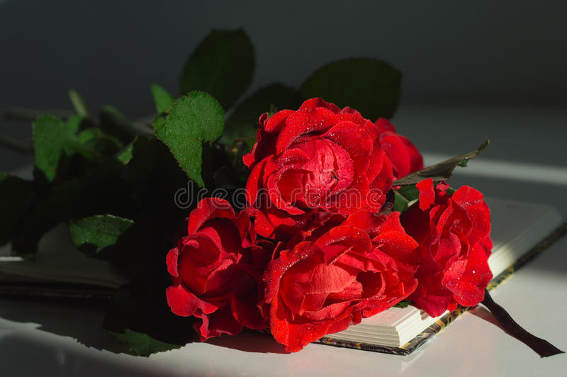 Bouquet of red roses on the notebook stock images