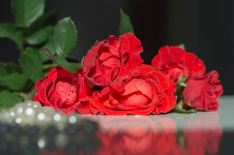Bouquet of red roses and pearl necklace on the reflecting table. Romantic still life for Valentine's day or Birthday greeting stock photo