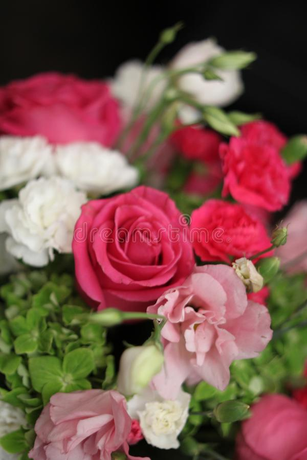 Rose bouquet 1544 royalty free stock photography