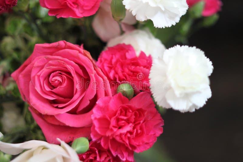 Rose bouquet 1714 stock photos
