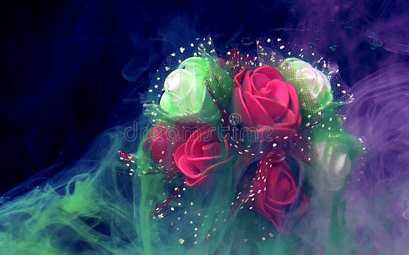 Bouquet of red and white roses in a green and purple fog royalty free stock photo