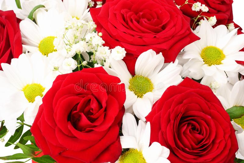Bouquet of red and white spring flowers on a white background royalty free stock image
