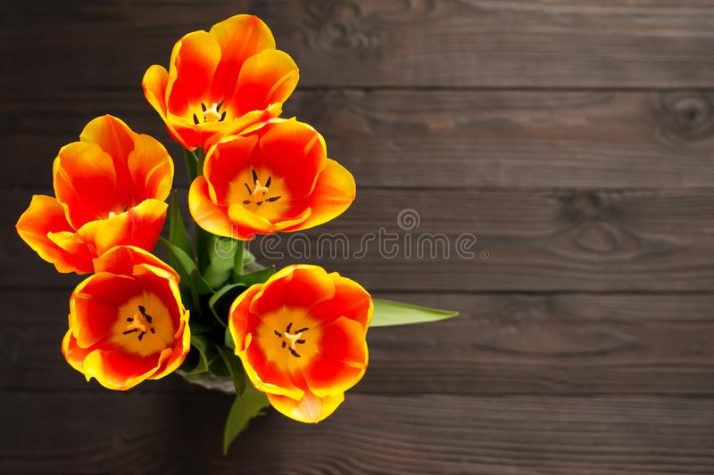 Bouquet of red and yellow tulips on a dark wooden background. The view from the top. stock photo