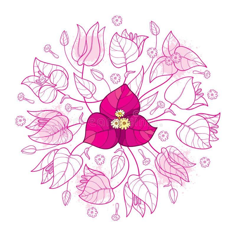 Bouquet rond de vecteur groupe d'ensemble de bouganvillée ou de Buganvilla de fleur avec le bourgeon et la feuille dans le rose e illustration stock