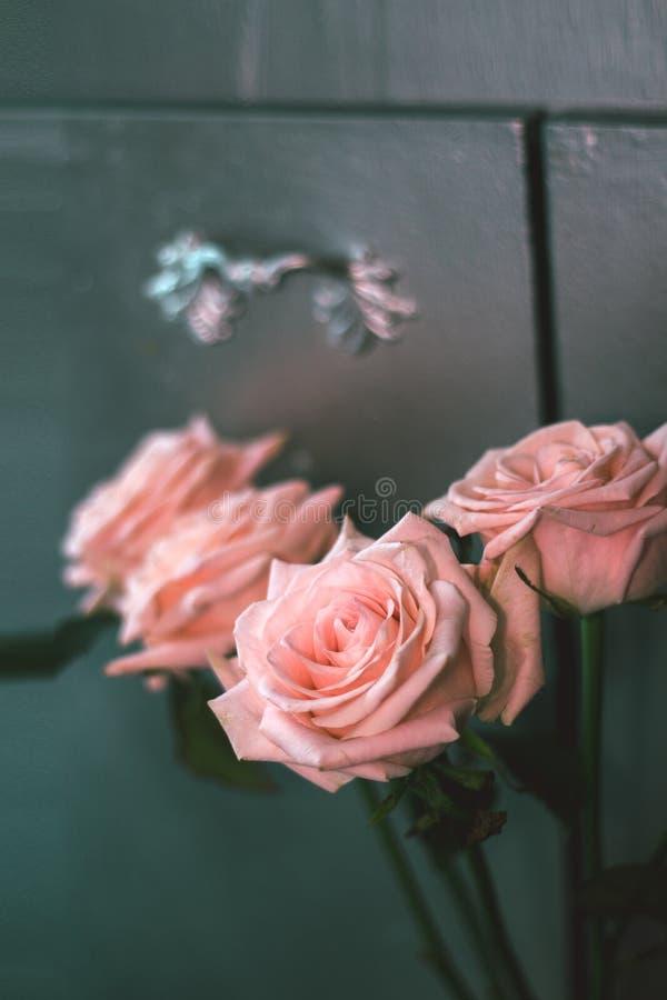 Bouquet rose à moitié mort photographie stock