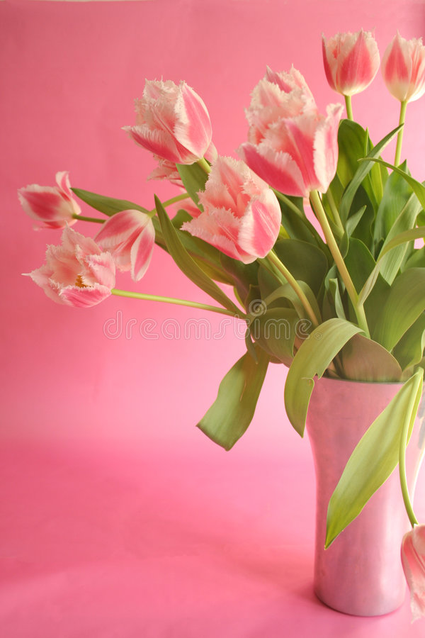 Bouquet rose photos stock