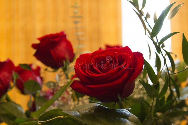 bouquet rose photographie stock libre de droits