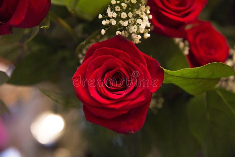 bouquet rose photographie stock