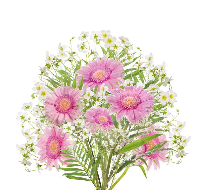Bouquet rose de gerber, d'isolement sur le blanc photos libres de droits
