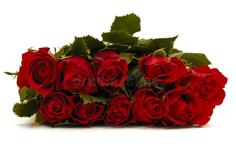 Bouquet of rose flowers on white background