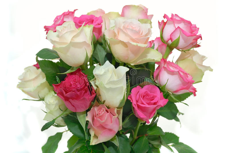 Bouquet of roses. Bouquet of pink, white and pale pink roses, isolated on white royalty free stock photography
