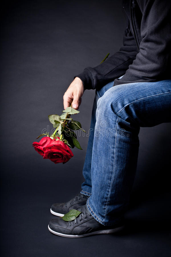 Download Bouquet of Roses stock image. Image of dating, cool, beauty - 25411217