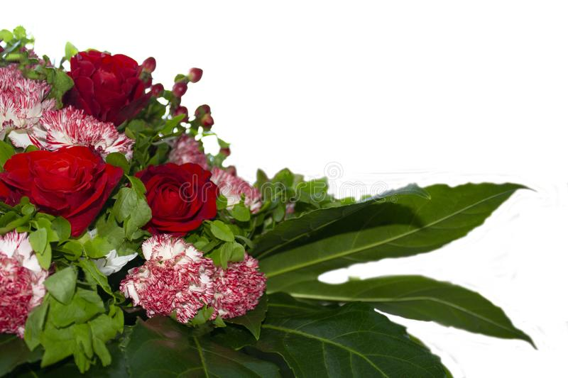 Bouquet of roses, carnations, barberry royalty free stock images