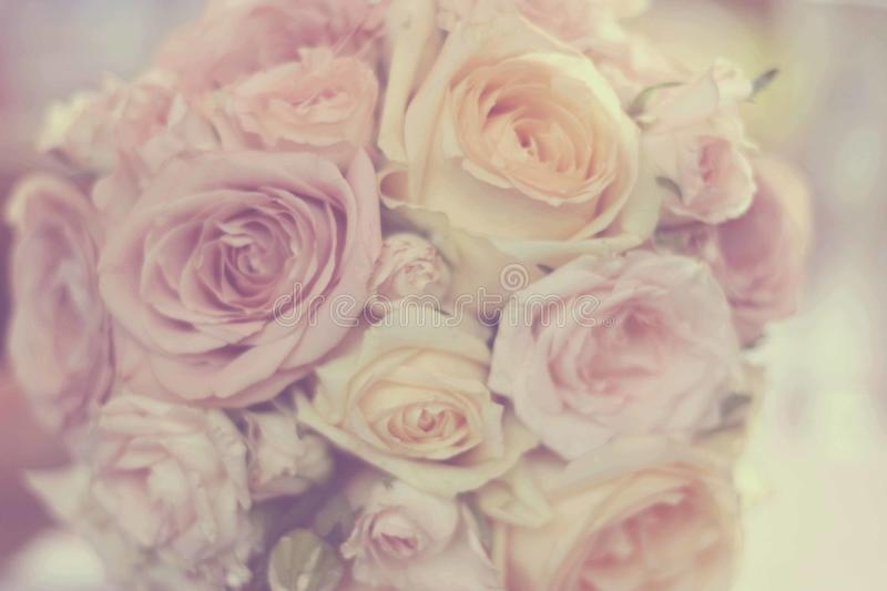 Bouquet of roses. Delicate buquet of roses for wedding royalty free stock image