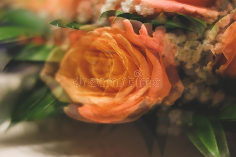Bouquet of roses with double exposure abstract background royalty free stock image