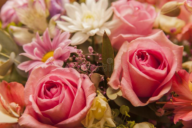 Bouquet of roses and other flowers close-up royalty free stock photos