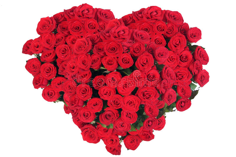 Bouquet of roses in shape of heart. On white background royalty free stock images