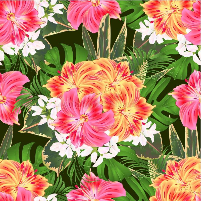Bouquet sans couture de texture avec l'arrangement floral tropical de fleurs, avec belle Lily Alstroemeria jaune et rose, paume,  illustration libre de droits