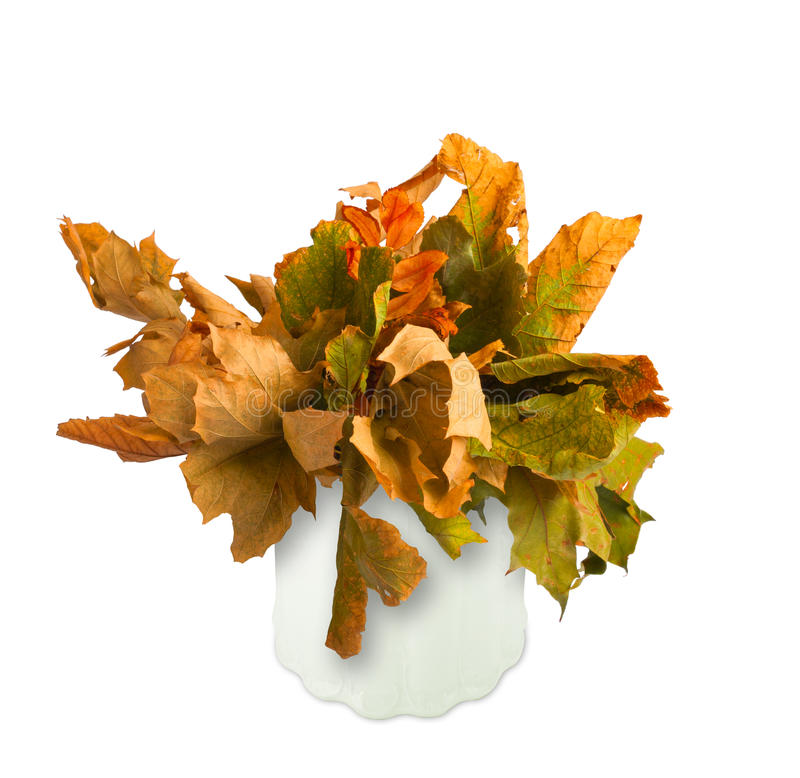 bouquet sec des feuilles d 39 automne dans un vase photo stock image du organique rable 33998966. Black Bedroom Furniture Sets. Home Design Ideas
