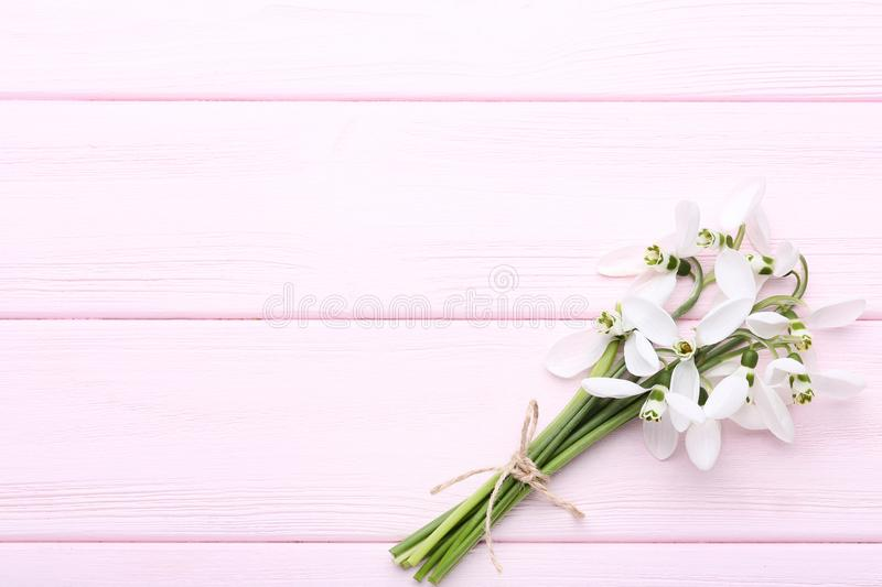 Bouquet of snowdrop flowers stock photos