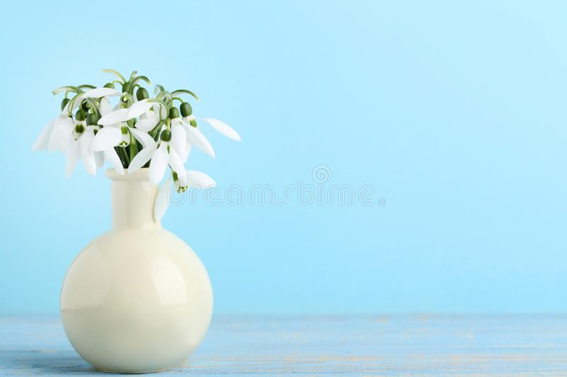 Bouquet of snowdrop flowers stock photo