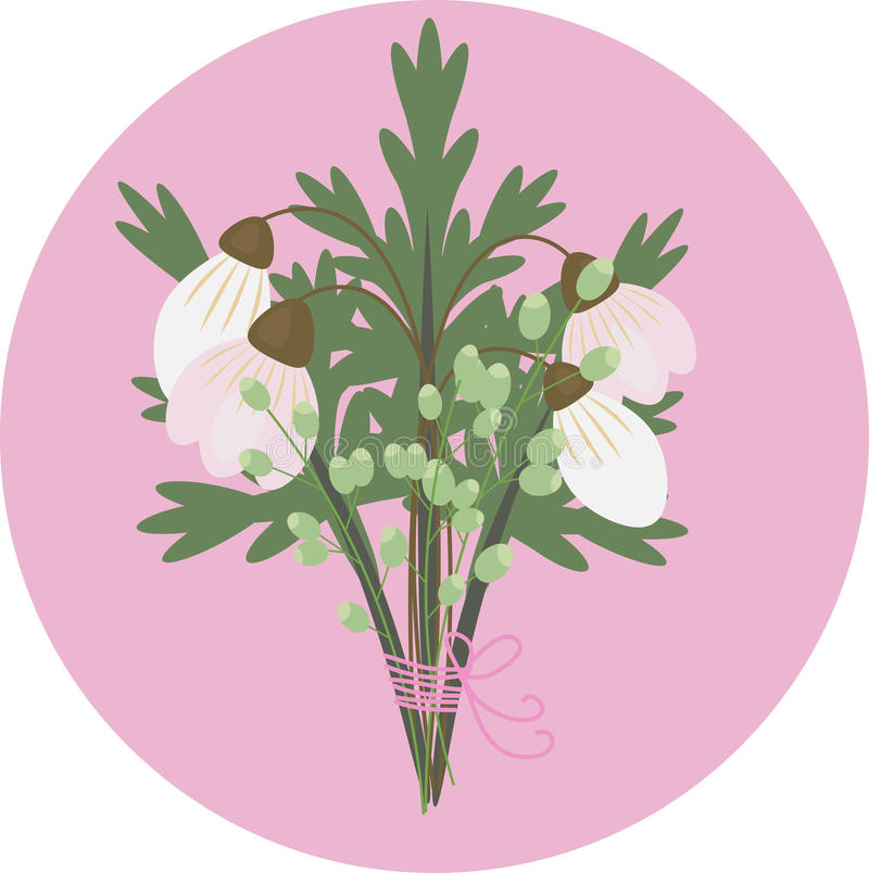 A Bouquet of Snowdrop pink and white stock image