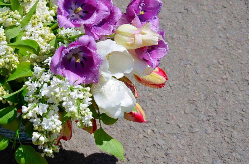 Bouquet of spring flowers. White lilac. White, lilac, yellow tulips stock images