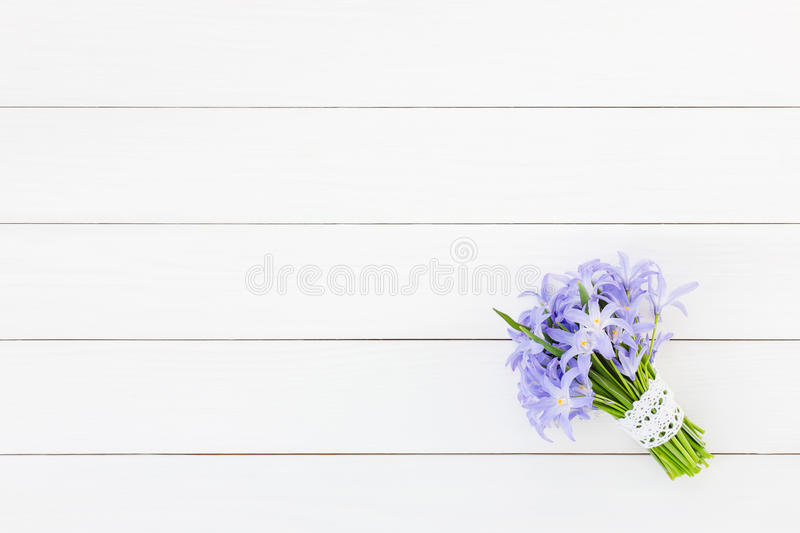 Bouquet of spring flowers decorated with lace on white wooden background, copy space. Chionodoxa flowers. Bouquet of spring flowers decorated with lace on white stock images