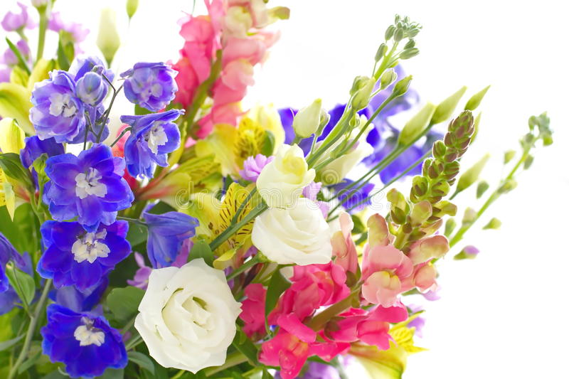 Bouquet of spring flowers. On light background stock photos