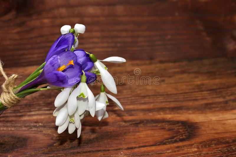 The bouquet of spring flowers snowdrops and crocuses stock photo