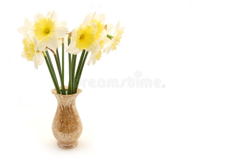 Bouquet of spring flowers in vase. Isolated on white background royalty free stock photos