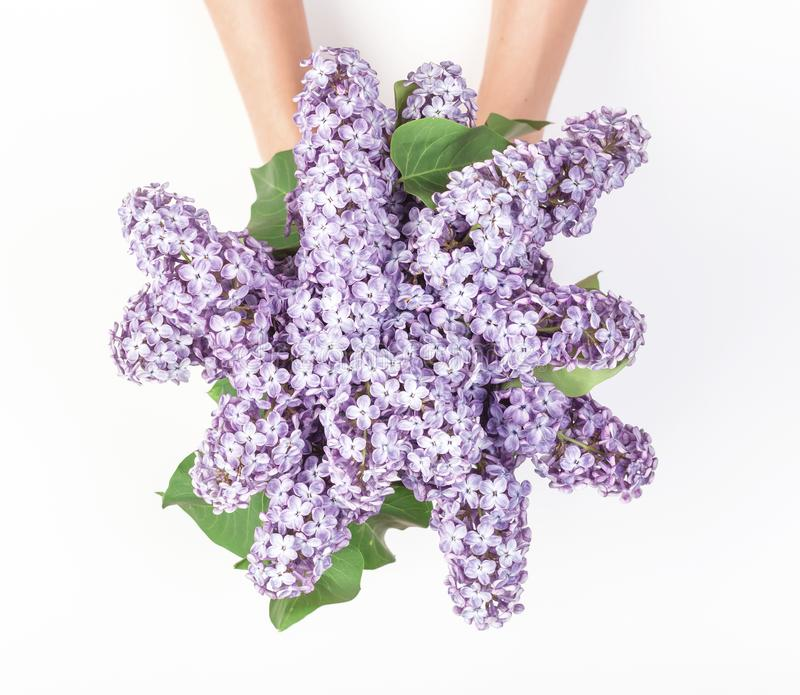 Bouquet of spring lilac flowers in woman`s hand isolated on white background. Flat lay. stock image