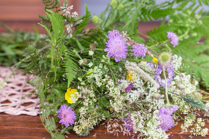 A bouquet of summer wild herbs and flowers in nature, the summer solstice. Summer sun celebration. Ligo in Latvia, Europe royalty free stock photos