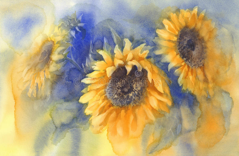 Bouquet of sunflowers on blue background watercolor vector illustration