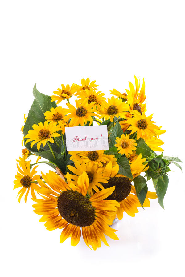 Download Bouquet Of Sunflowers And Gratitude Stock Photo - Image: 33287240
