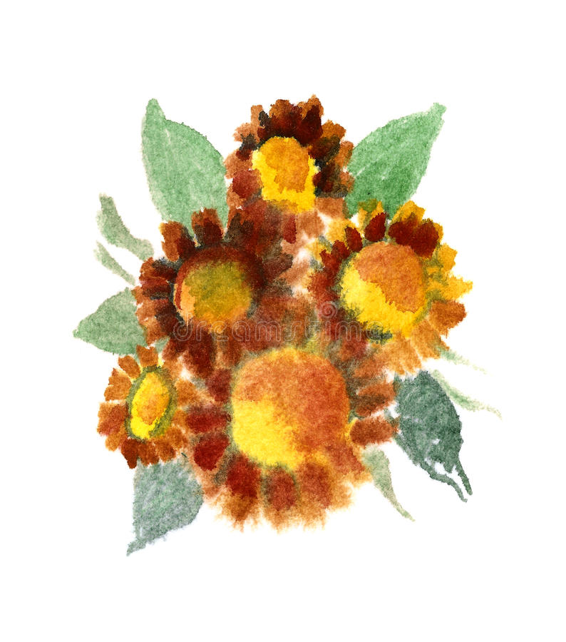 Bouquet of sunflowers painted in Watercolor vector illustration