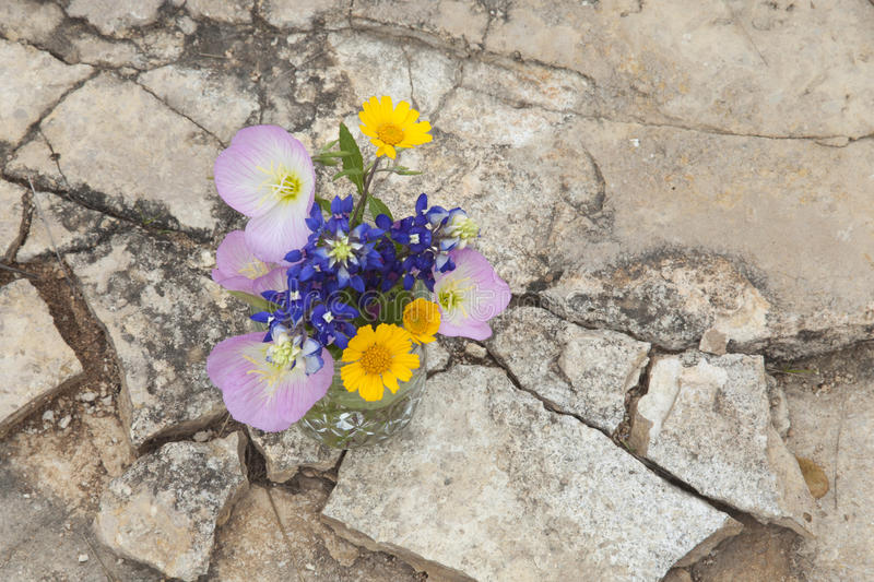 Bouquet of Texas wildflowers in a jar on stone ground stock photography