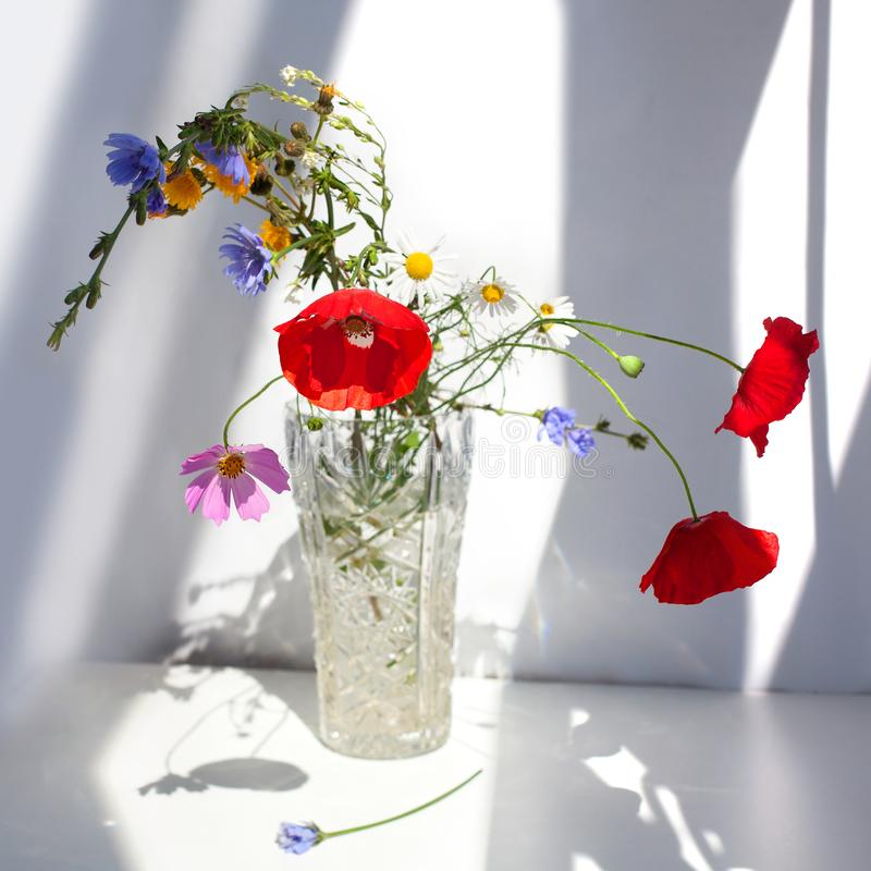 Bouquet of three red poppy flowers and different wildflowers in crystal vase with water on white table with contrast sun light and royalty free stock photography