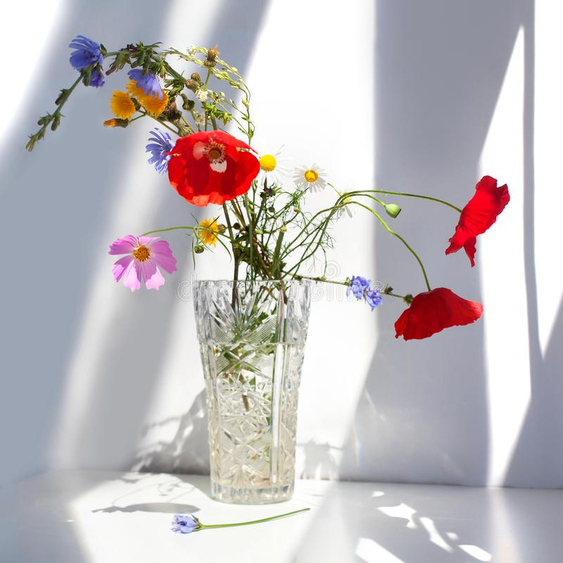 Bouquet of three red poppy flowers and different wildflowers in crystal vase with water on white table with contrast sun light and stock photography