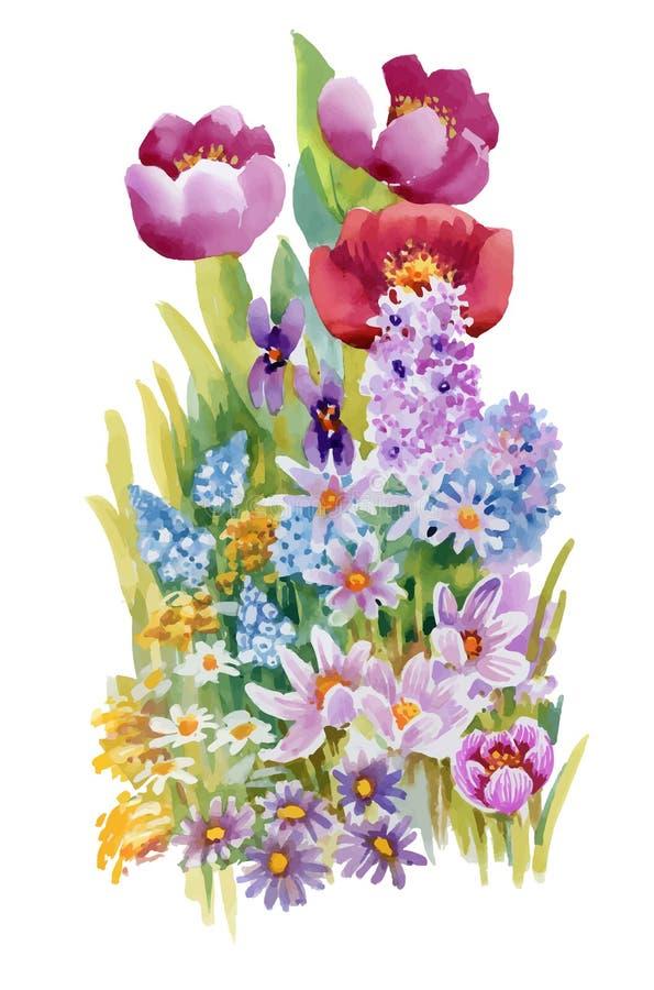 Bouquet tiré par la main des fleurs d'isolement sur le fond blanc illustration libre de droits